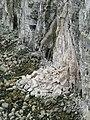 Rock Fall at Bempton Cliffs.jpg