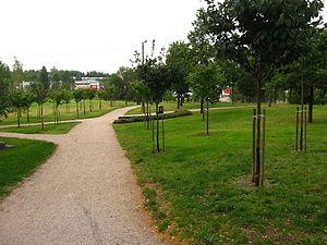 Kirsikkapuisto - Image: Roihuvuoren kirsikkapuisto 1