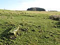 Roman(^) stone near Brocolitia - geograph.org.uk - 1132060.jpg
