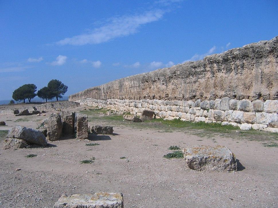 Roman Wall - Empúries 2005-03-27