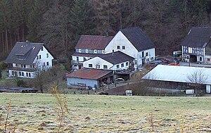 Rotbusch - Rotbusch