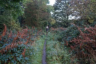 Masbrough - Image: Rotherham Roundwalk towards Fenton Road (geograph 4197963)