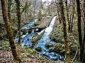 Ruisseau de la source Bergeret. (2).jpg