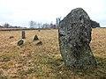 Särestads gravfält (Raä-nr Årstad 40-1) resta stenar 2656.jpg