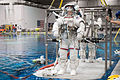 STS-135 Rex Walheim and Sandy Magnus in the Neutral Buoyancy Laboratory.jpg