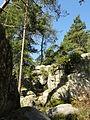 Saint-Pierre-lès-Nemours (77), le Mont Sarrasin par le GR 13, sens est-ouest 25.JPG