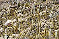 Salar de Uyuni 02.jpg