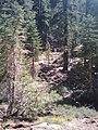 San Bernardino County, CA, USA - panoramio (18).jpg