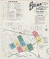 Sanborn Fire Insurance Map from Selma, Dallas County, Alabama. LOC sanborn00091 003-1.jpg