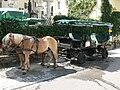 Sankt Wolfgang - Pferdegespann.jpg
