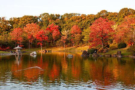 Scenery of Shinji pond at Expo'70 Commemorative Park in Osaka, November 2016.