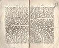 Schön-Аmmi von Marienthal und der Kirgisermichel - 1892 - p. 2-3.jpg