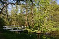Schleswig-Holstein, Nordhastedt, Landschaftsschutzgebiet Mühlenteich NIK 2486.jpg
