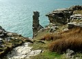 Sea Stack Tintagel - geograph.org.uk - 687026.jpg