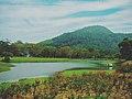 Seetawaka Botanical Garden.jpg