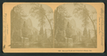 Sentinel Rock and Hutchin's Hotel, Cal, by Littleton View Co..png