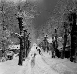 Seraidi Bugeaud snow Dec 1961.png