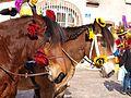 Sergines-FR-89-carnaval 2017-chevaux-13.jpg