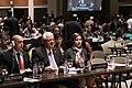 Sesión General de la Unión Interparlamentaria (8583255651).jpg