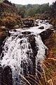 Severn-Break-its-Neck Falls - geograph.org.uk - 573035.jpg