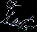 Shraddha Kapoor tranperent signature.png