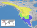 Sialia currucoides distribution.png