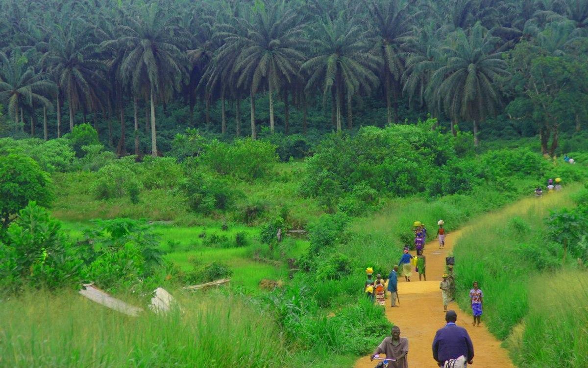 Transport in Sierra Leone Wikipedia