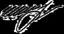Firma de Serguéi Shoigú