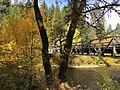 Sims Bridge in the Fall (38828591012).jpg