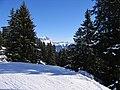 Skigebiet Flumserberg (Flumserberg, Flums, Tannenheim, Tannenboden, Bergheim, Oberterzen, Unterterzen) - panoramio (1).jpg
