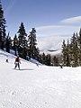 Skiing (30125778).jpg