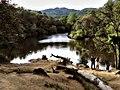 Small Lake (262489735).jpeg