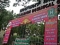 Snap from Lalbagh Flower Show Aug 2013 7788.JPG