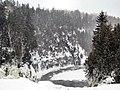 Snowfalls (100409206).jpg