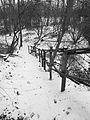 Snowstairs (8436865881).jpg