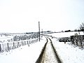 Snowy day - geograph.org.uk - 135979.jpg