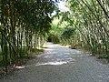 Sokhumi Botanical Garden, 2010.jpg