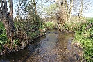 Sommerkahl (Kahl) River in Germany