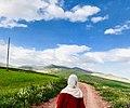 Spring in Algeria.jpg