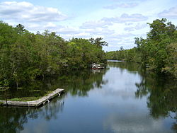 St Marks River at Newport, Florida.jpg