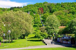 Stadtgarten Freiburg - Image of the City Garden with Schlossberg Tram