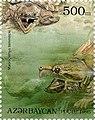 Stamps of Azerbaijan, 1995-327.jpg