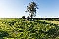 Stenvad (Norddjurs Kommune).50 kroners Dyssen.23.42459.ajb.jpg