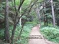 Stepanavan Dendropark 2011 1.jpg