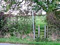 Stile, Footpath to Rawshaw Lane - geograph.org.uk - 274802.jpg