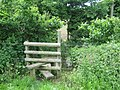 Stile on Maplescombe Lane - geograph.org.uk - 1314953.jpg