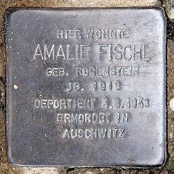 Photo of Amalie Fischl brass plaque