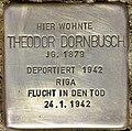 Stolperstein für Theodor Dornbusch (Potsdam).jpg