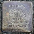 Stumbling stone for Hermann Ziegellaub (Thieboldsgasse 102)