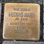 Stolpersteine Regensburg Hahn.jpg